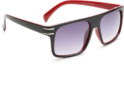 Alee Wayfarer Sunglasses
