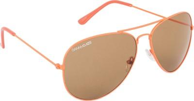 Danny Daze D-009-C7 Aviator Sunglasses
