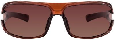 Fastrack P193BR1 Sunglasses(Red)