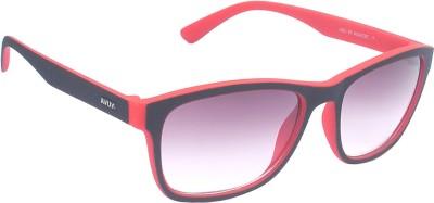 CANDYBOX Premia Sports Sunglasses
