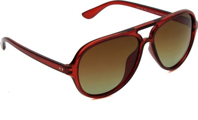 6by6 6B6SG1191 Aviator Sunglasses(Brown)