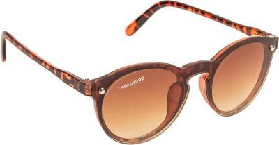 Danny Daze D-2867-C3 Round Sunglasses(Brown)
