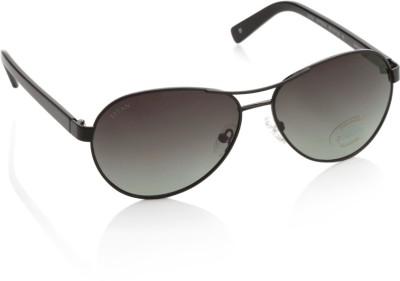 Glares by Titan Aviator Sunglasses