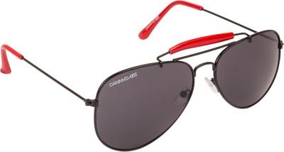 Danny Daze D-1713-C4 Aviator Sunglasses