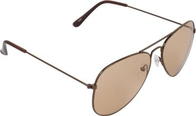 NB Brown Brown Good look Aviator Sunglasses