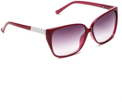 Estycal Over-sized Sunglasses