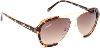 Amaze Medium Brown Aviator Sunglasses