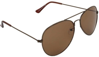 Allen Cate Stunning Dark Brown Aviator Sunglasses