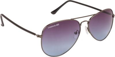 Danny Daze D-1714-C2 Aviator Sunglasses