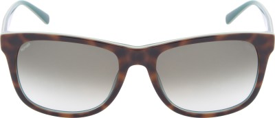 Tommy Hilfiger TH 7959 Hav/Grn C3 58 S Wayfarer Sunglasses(Green)