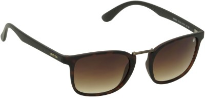 United Colors of Benetton Tortoise Brown Wayfarer Sunglasses