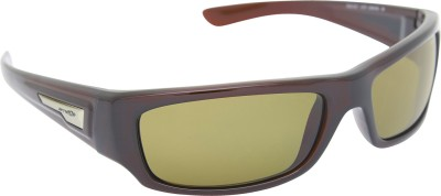 Arnette AN_4157_BRNMRN Rectangular Sunglasses(Brown)