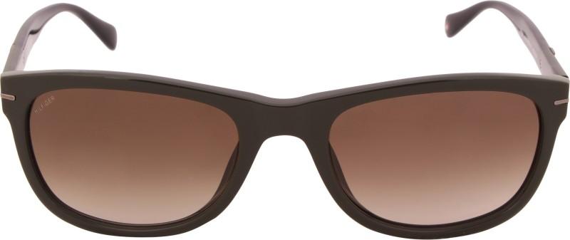 53b665322588 Tommy Hilfiger TH 7948 Olive/Blk C5 54 S Wayfarer Sunglasses(Brown)