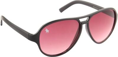 Royal County Of Berkshire Polo Club POCA-11 Over-sized Sunglasses