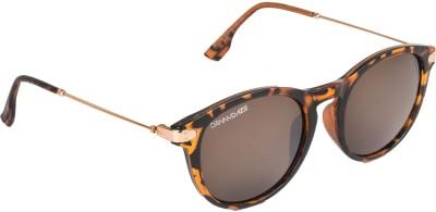 Danny Daze D-2531-C2 Wayfarer Sunglasses(Brown)