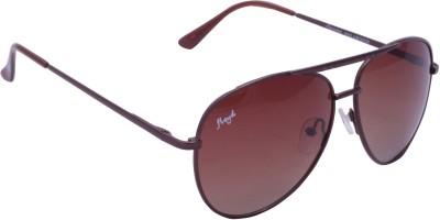 Floyd 121049_BROWN_BROWN Aviator Sunglasses(Brown)