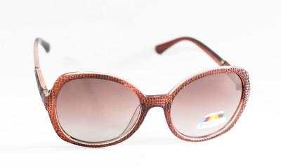 Brndey Gold Seal Oval Sunglasses