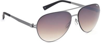 IDEE IDEE S2097 C2 58 Aviator Sunglasses(Brown)