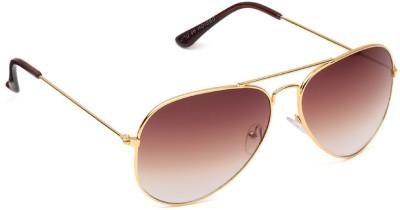 Candid GC103M7 Aviator Sunglasses(Brown)