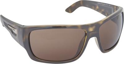 Arnette AN_4149_BRNBRN Over-sized Sunglasses(Brown)