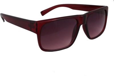Sushito Elegant Wayfarer Sunglasses