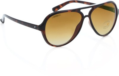Fastrack P296BR2 Aviator Sunglasses(Brown)