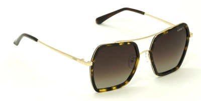 IDEE S2205-C2P Brown Polarized Shaded Large 53mm Oversized Over-sized Sunglasses(Brown)