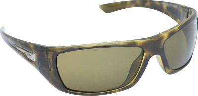 Arnette AN_4147_BRNBRN Rectangular Sunglasses(Brown)