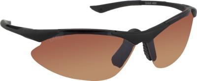Eagle Eyewear Sports Sunglasses