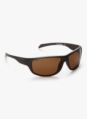 Joe Black JB-802-C2P Rectangular Sunglasses(Brown)