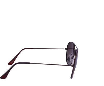 Polor Color Aviator Sunglasses