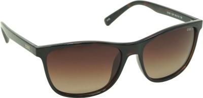 IDEE IDEE-S1937-C2-P Wayfarer Sunglasses(Brown)