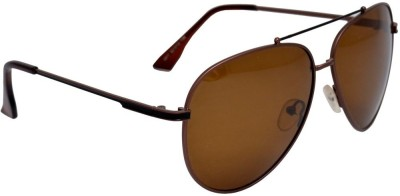City Optical Aviator Sunglasses