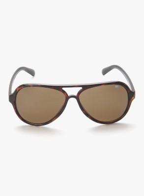 MTV MTV-120-C6 Brown Aviator Sunglasses(Brown)