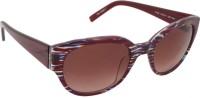 Esprit ET17860 Spectacle  Sunglasses(Brown)