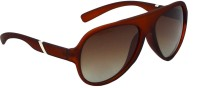 Red Knot MP115-MBRN-SLV-MBRN-BRN-62 Aviator Sunglasses(Brown)