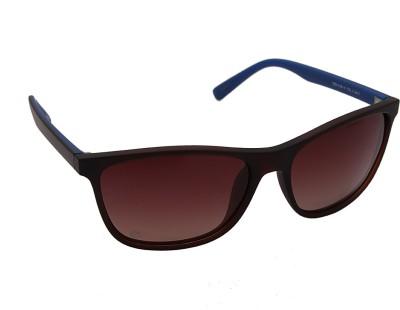 Izarra IZ-312-06-14-C3 Wayfarer Sunglasses(Brown)