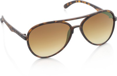 Rockford Aviator Sunglasses