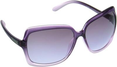 Sisley Over-sized Sunglasses