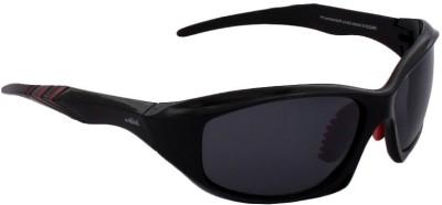 Archie Wayfarer Sunglasses