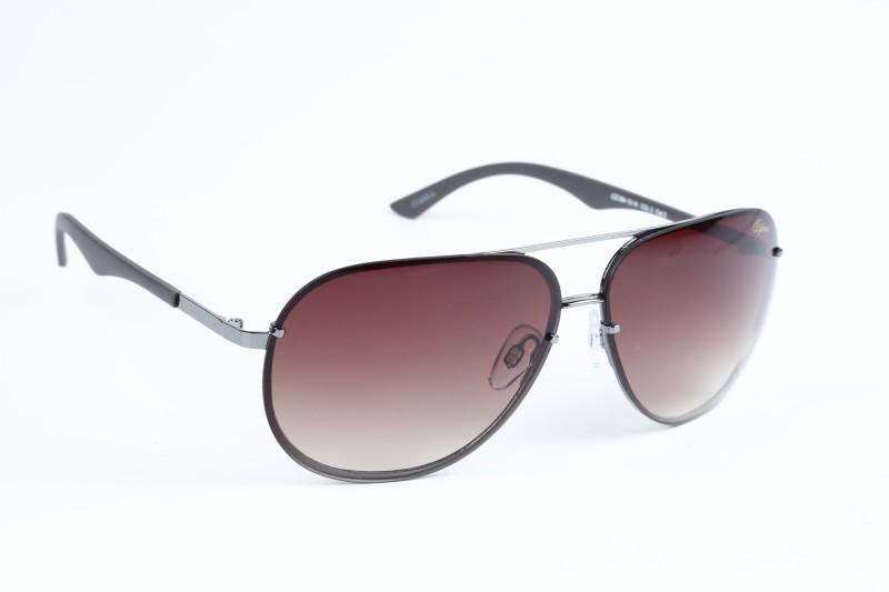Izarra IZ-394-C3 Aviator Sunglasses(Brown)