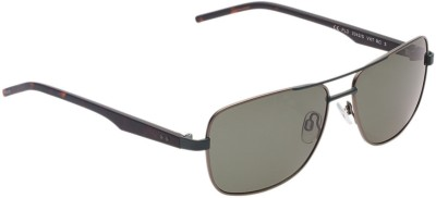 Polaroid PLD2042/S59RCVXT Rectangular Sunglasses(Grey)