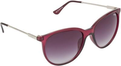 IMAGE Oval Sunglasses