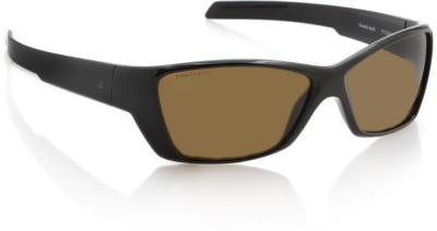 Fastrack P182BR1F Wayfarer Sunglasses(Brown)