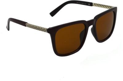 Red Knot 2504 Wayfarer Sunglasses