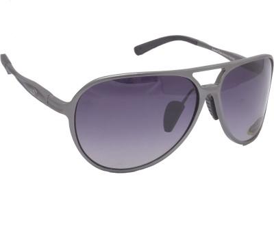 LaurelDale Aviator Sunglasses