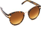 6by6 SG742 Round Sunglasses (Brown)