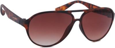 Joe Black JB-705-C4 Aviator Sunglasses(Brown)