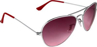 Aligatorr Aviator Sunglasses