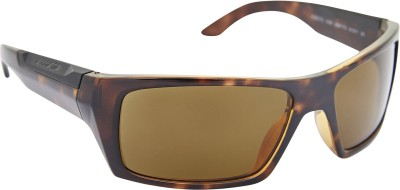 Arnette AN_4181_RTBRNBRN Rectangular Sunglasses(Brown)